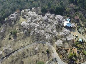 安浦町大字中畑 二本松公園右端のお堂は、弘法寺です。