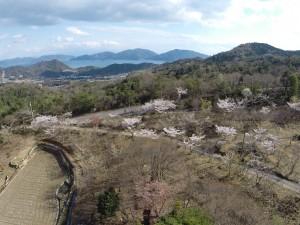 二本松公園の上空50mより、安登町を望む。